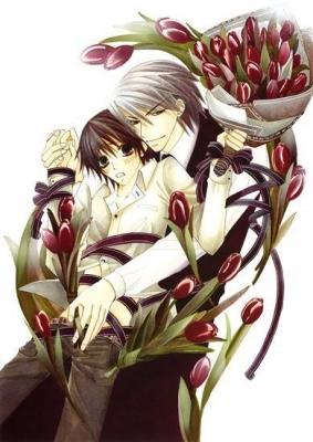 Чистая романтика / Junjou Romantica