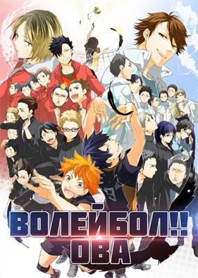 Волейбол!! ОВА / Haikyuu!! OVA