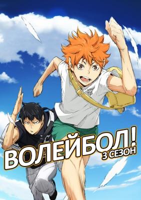 Волейбол!! (третий сезон) / Haikyuu!!: Karasuno Koukou VS Shiratorizawa Gakuen Koukou