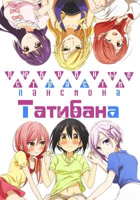 Любовные страсти пансиона Татибана / Tachibanakan Triangle